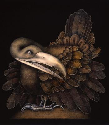 BOMBAX BIRD