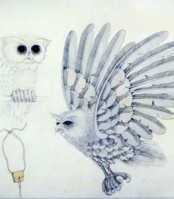 SILVER OWL MESSENGER